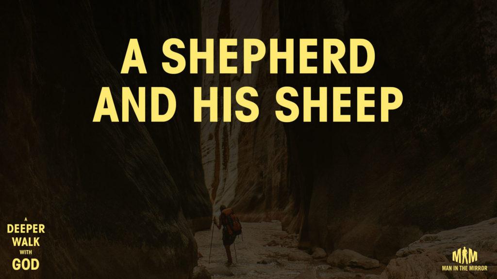 Best Online Bible Study App
